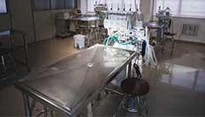 Laboratório Animal